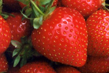 Why does a strawberry look red